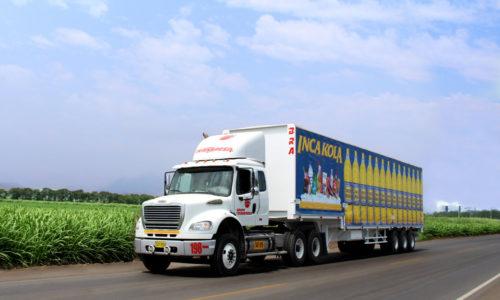camion laredo (FILEminimizer)